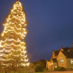Christmas at Wakehurst Place