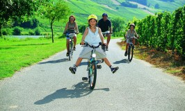 Cycling in Mosel - Photo Courtesy Mosel Tourism