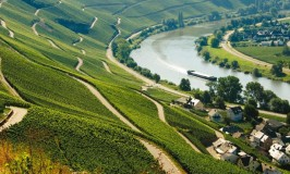 Mosel Region - Photo by Moselland Tourism