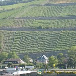 Assmannshausen - A Red Wine Town