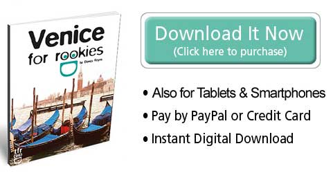 Download the Venice for rookies eBook