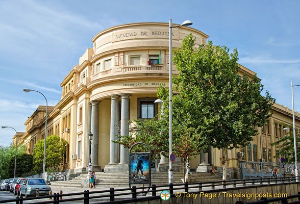 university of granada  faculty of medicine