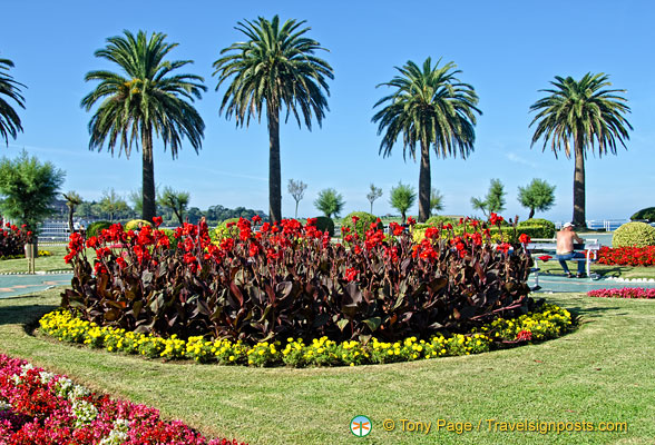 Beautiful flower beds of the piqu o gardens for Beautiful flower beds