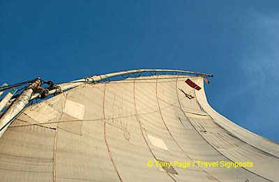 Sail of a felucca.