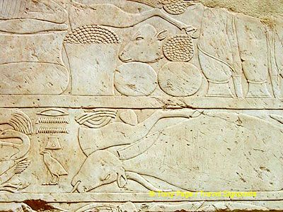 [Temple of Hatshepsut - Deir al-Bahri - Nile River Cruise - Egypt]