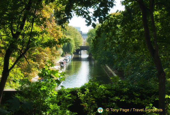 Regent's Canal hidden by trees