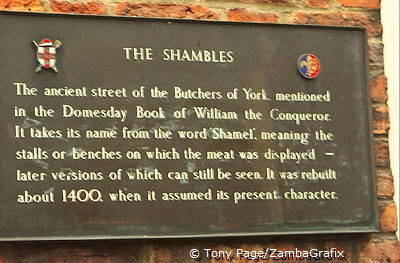 About The Shambles