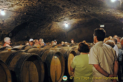 Wine-tasting, Gevry-Chambertin, Cote d'Or, France