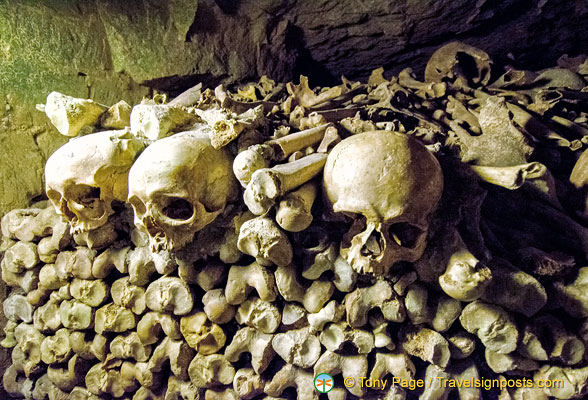 Some skulls and bones in the Catacombes