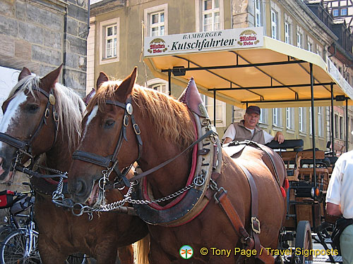 Bamberger Kutschfahrten - Horse and carriage rides in Bamberg