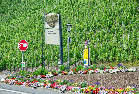 Bernkastel is on the Mosel wine route
