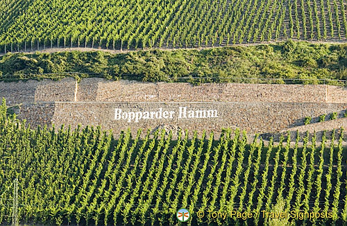 Vineyards at Bopparder Hamm