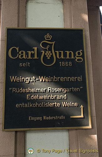 Plaque commerating Carl Jung[Rudesheim - Rhine River Cruise - Germany]