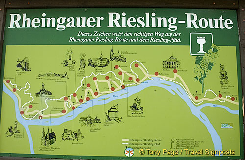 For those interested in doing the Riesling Route