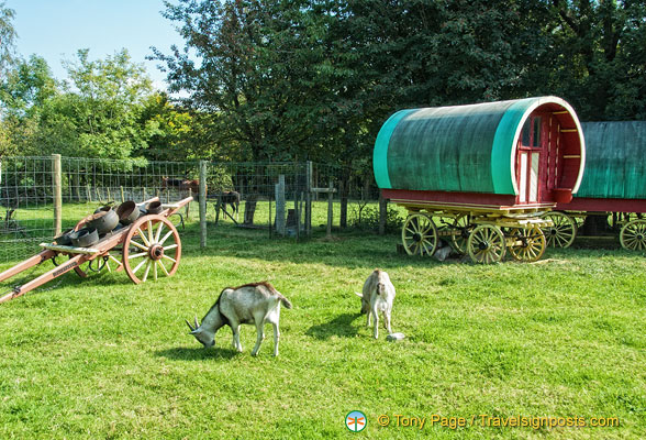 Traveller wagons