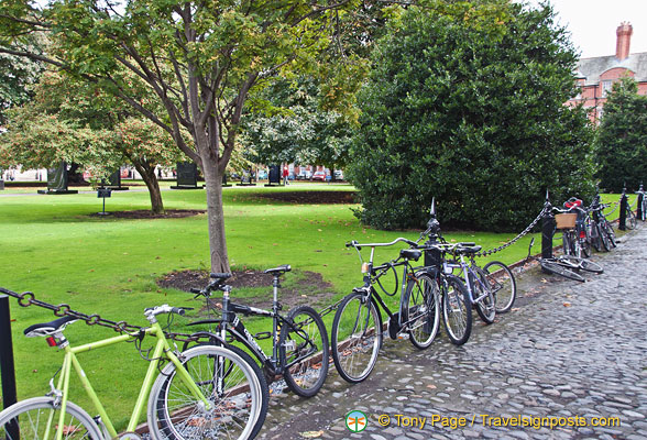 Trinity College student transport