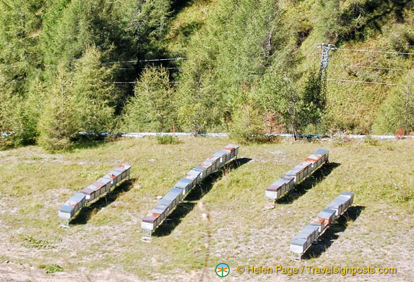 Beehives in Passo Giao