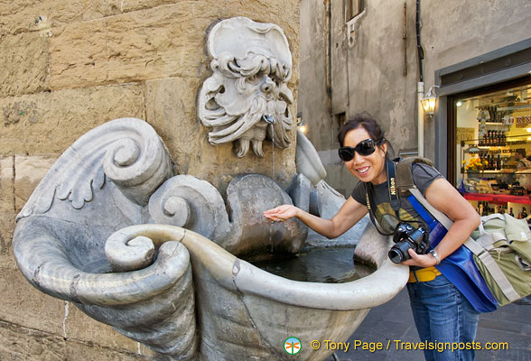 Oltrarno's most famous 16th century fountain and gargoyle on corner of Via dello Sprone and Borgo San Jacopo