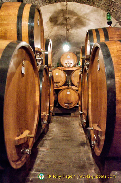 Giant casks of Contucci wines