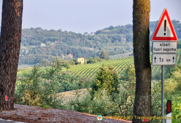 Hills around Montepulciano