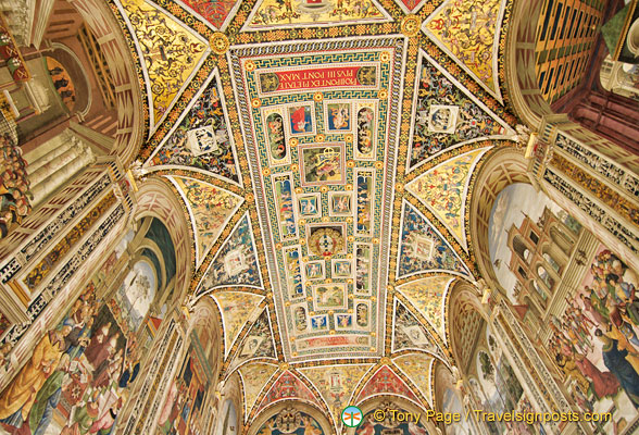 Ceiling of the Piccolomini Library