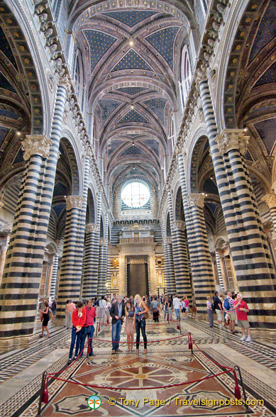 Siena Cattedrale nave