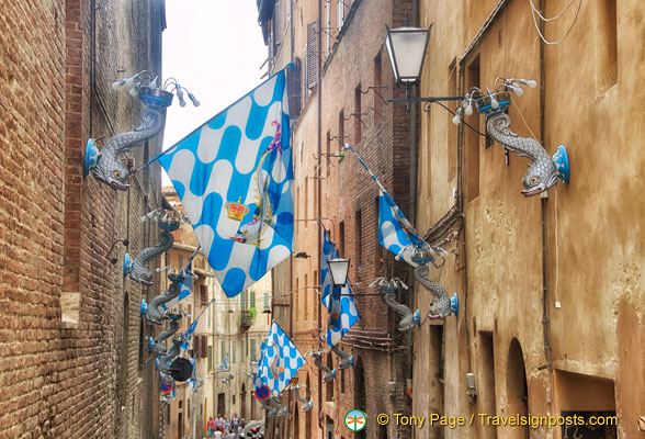 Flags of the Contrada of the Capitana dell'Onda