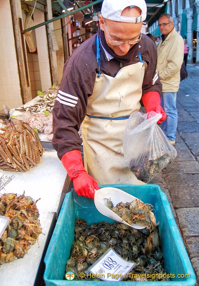 Masanette - these little crabs are seasonal Venetian specialties