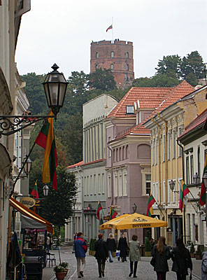 Old Town and the Gediminas Tower