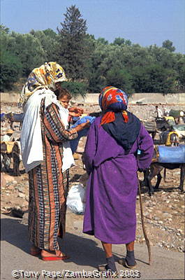 Ourika Valley and Berber Market