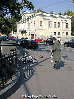 An elderly man feeding the birds