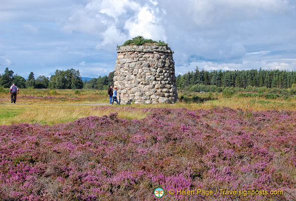 Beautiful Scottish heather add colour to the Memorial Cairn