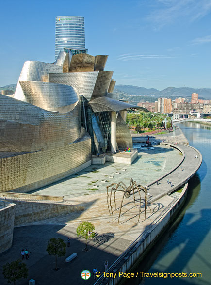 Titanium is rarely used for buildings so the Guggenheim Bilbao is unusual