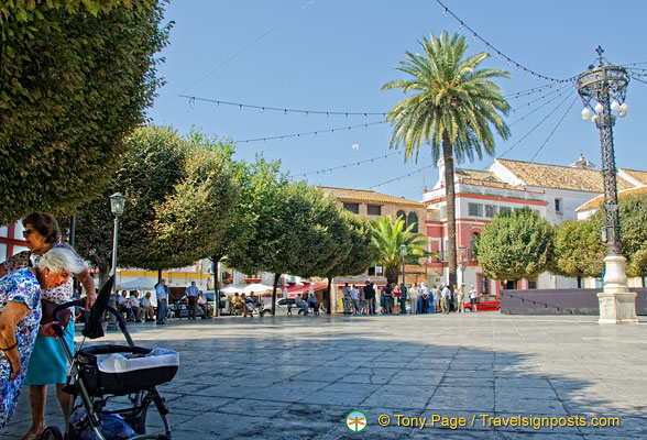 Plaza de San Fernando: Locals gather here and relax under the shade of the trees