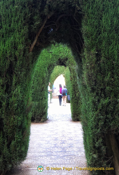 The secret gardens of the Generalife
