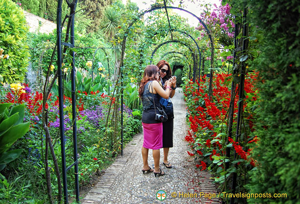 Generalife Gardens:  Comparing photos