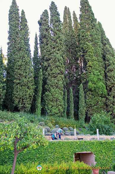 Generalife Lower Gardens