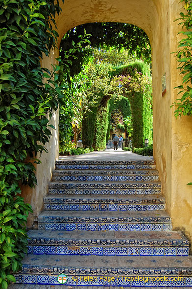 Glazed tile steps to the Jardín  del Estanque