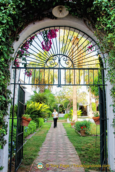 Looking into the palm court of Hacienda Los Miradores