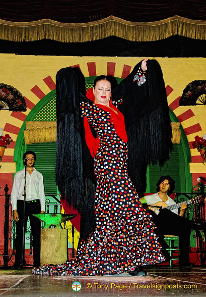 She is a leading Seville flamenco dancer