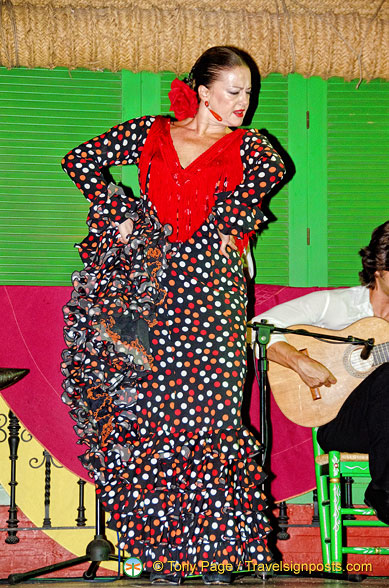 The star flamenco dancer at Palacio Andaluz