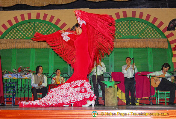 Flamenco dancer in full flight