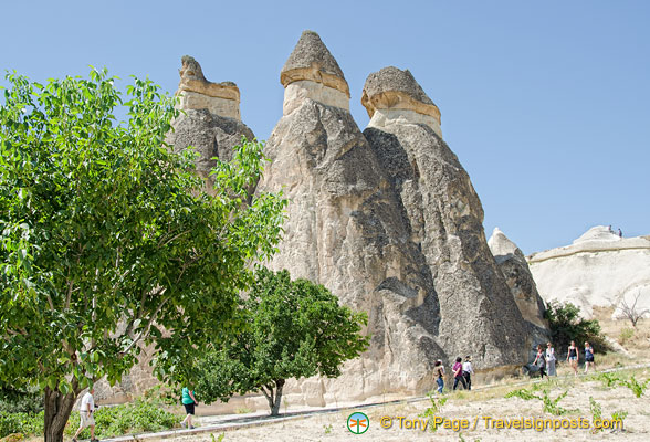A family of fairy chimneys