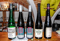 Five Wachau wines we tried in our wine-tasting session
