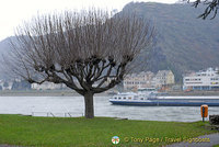 Rhine River Cruise in Winter