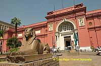 The Sphinx guarding the entrance to the Cairo Museum