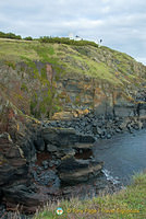 Lizard Point landscape