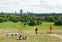 Panoramic view of central London from Primrose Hill