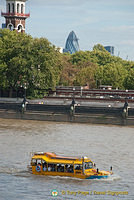 The amphibian London Duck