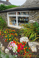Tintagel pottery shop
